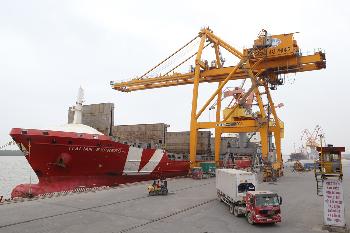 Các hãng tàu đưa nhiều tàu mới khai thác chuyến đầu tiên tại Cảng Hải Phòng