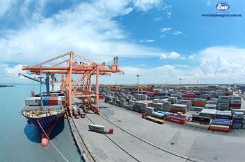 Chi nhánh Cảng Tân Vũ